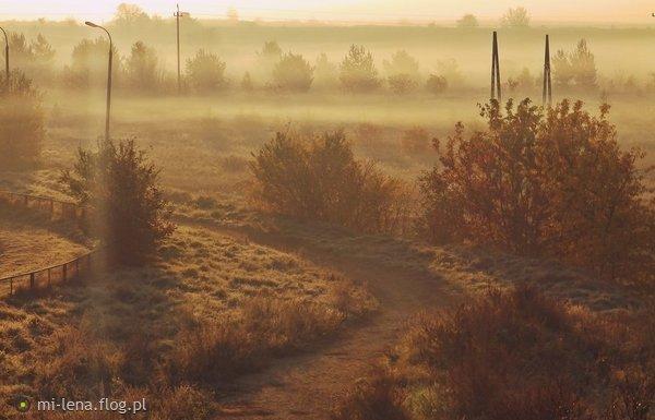 http://s26.flog.pl/media/foto_middle/12863447_porankiem-malowane.jpg